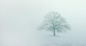 巧用Xshot--雾霾天拍照技能