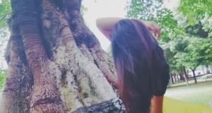 【随心而拍】+我在树下,静等花开