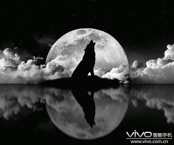 月下狼的手机壁纸